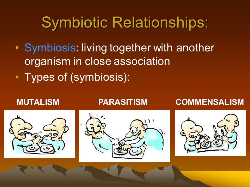 Symbiotic Relationships: Symbiosis: living together with another organism in close association Types of (symbiosis): MUTALISM PARASITISM COMMENSALISM