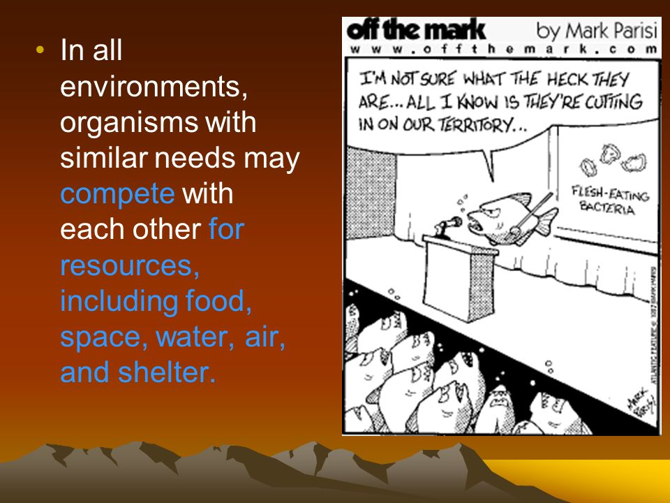 In all environments, organisms with similar needs may compete with each other for resources, including food, space, water, air, and shelter.