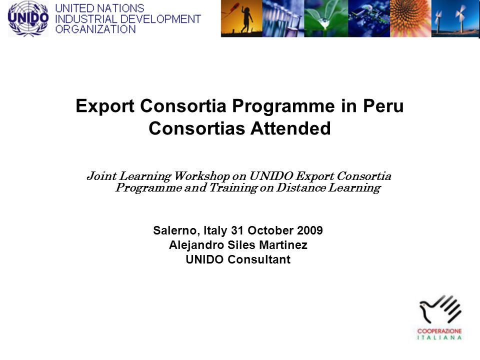 Export Consortia Programme in Peru Consortias Attended Joint Learning Workshop on UNIDO Export Consortia Programme and Training on Distance Learning S