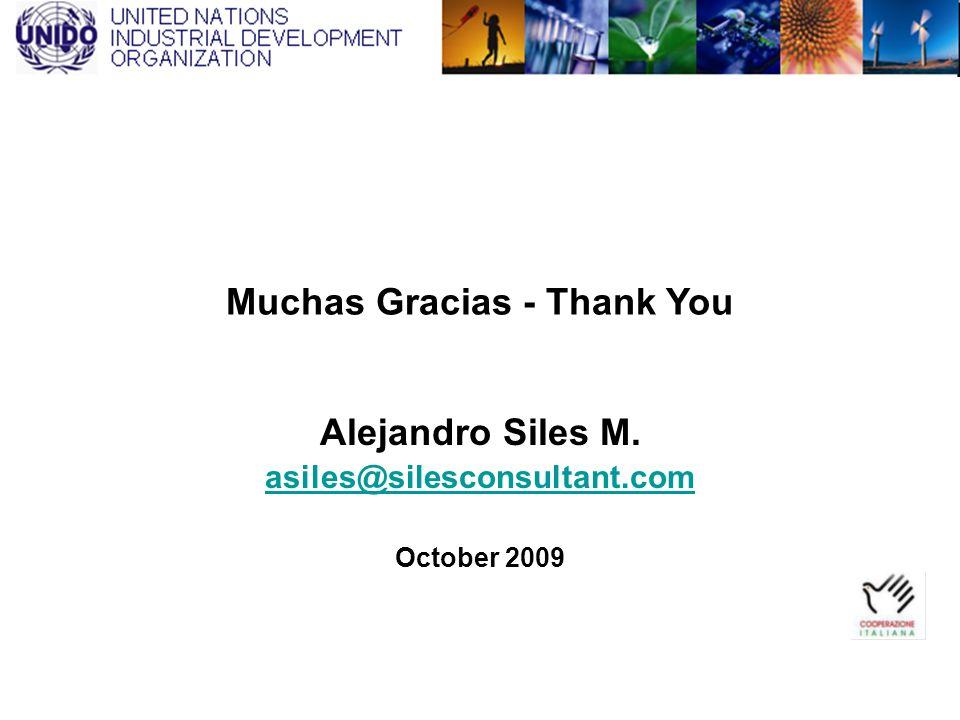 Muchas Gracias - Thank You Alejandro Siles M. asiles@silesconsultant.com October 2009