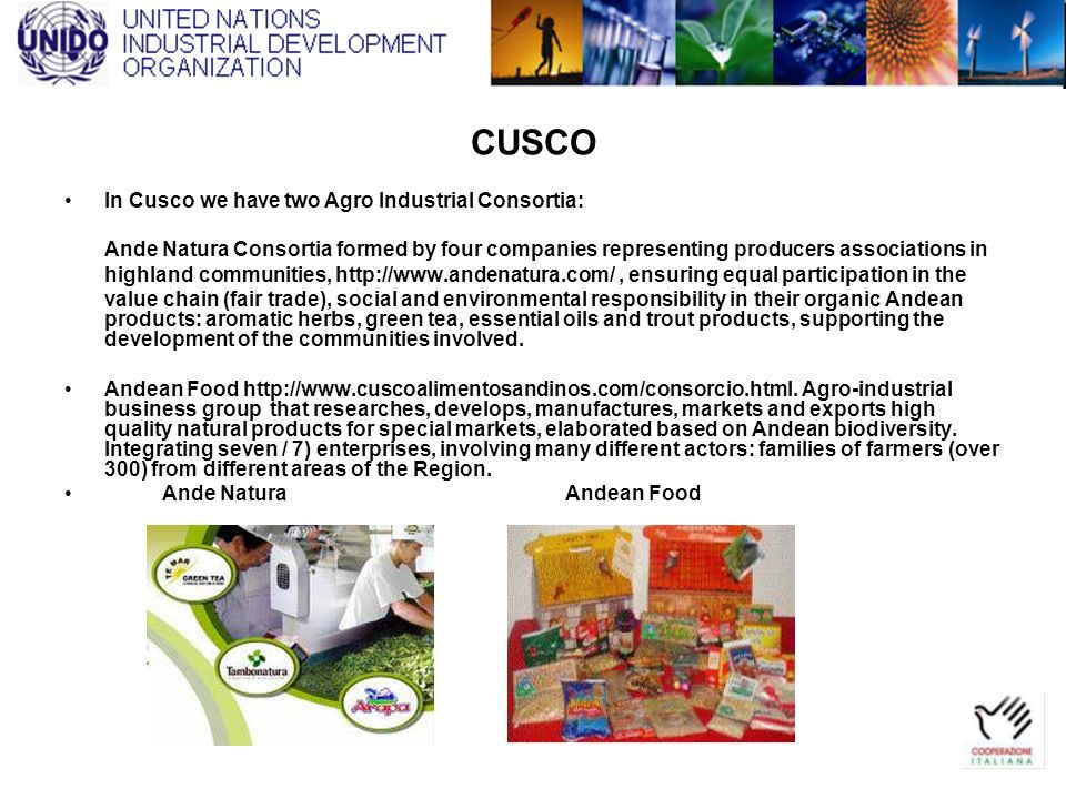 CUSCO In Cusco we have two Agro Industrial Consortia: Ande Natura Consortia formed by four companies representing producers associations in highland c