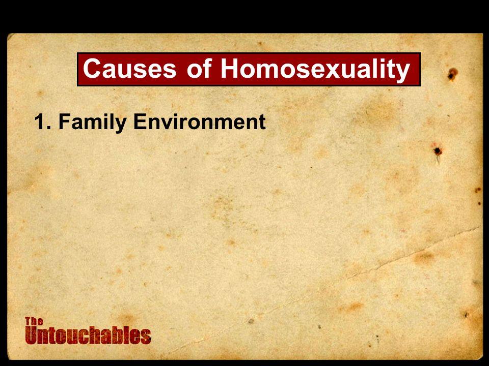 1.Family Environment