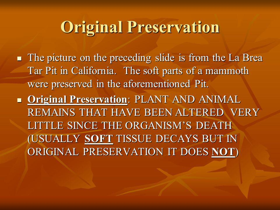 The picture on the preceding slide is from the La Brea Tar Pit in California. The soft parts of a mammoth were preserved in the aforementioned Pit. Th