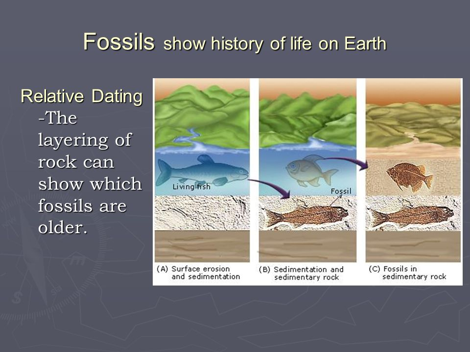 Fossils show history of life on Earth Relative Dating -The layering of rock can show which fossils are older.