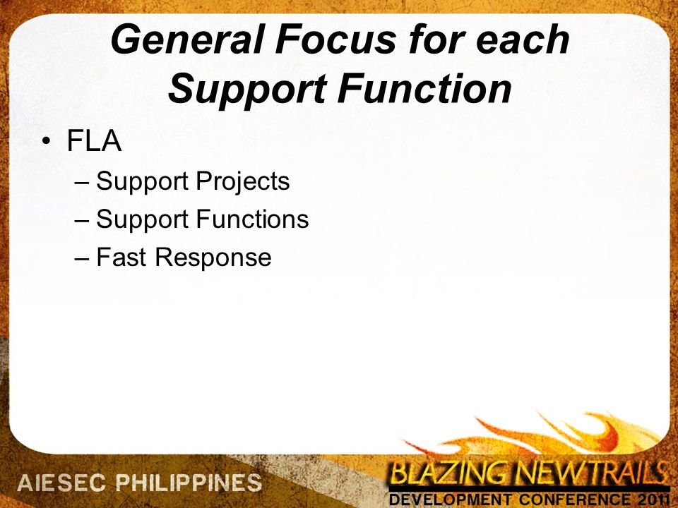 General Focus for each Support Function FLA –Support Projects –Support Functions –Fast Response
