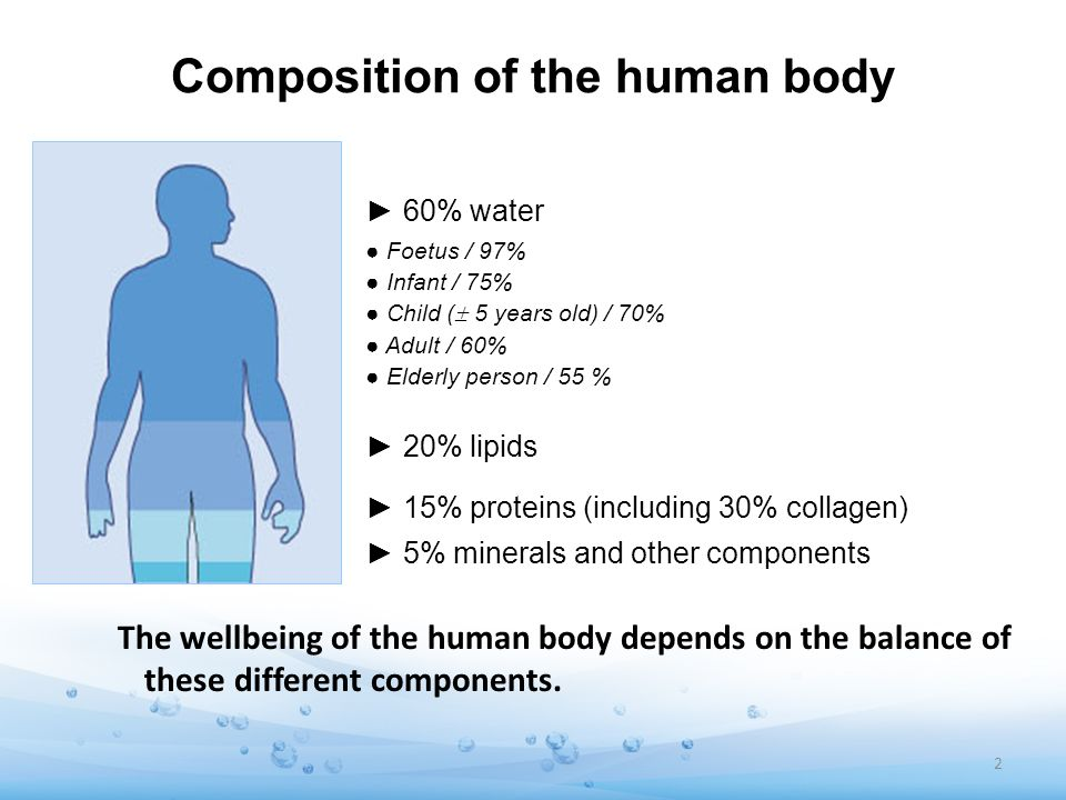 Composition of the human body 60% water Foetus / 97% Infant / 75% Child ( 5 years old) / 70% Adult / 60% Elderly person / 55 % 20% lipids 15% proteins