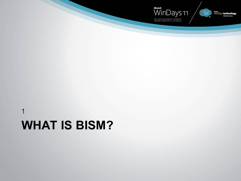 WHAT IS BISM? 1