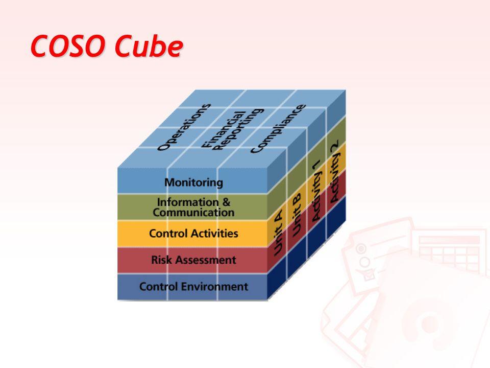 COSO Cube