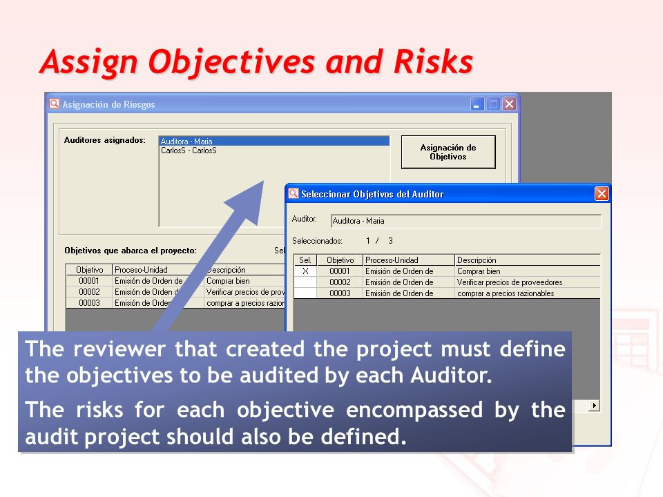 Assign Objectives and Risks The reviewer that created the project must define the objectives to be audited by each Auditor. The risks for each objecti