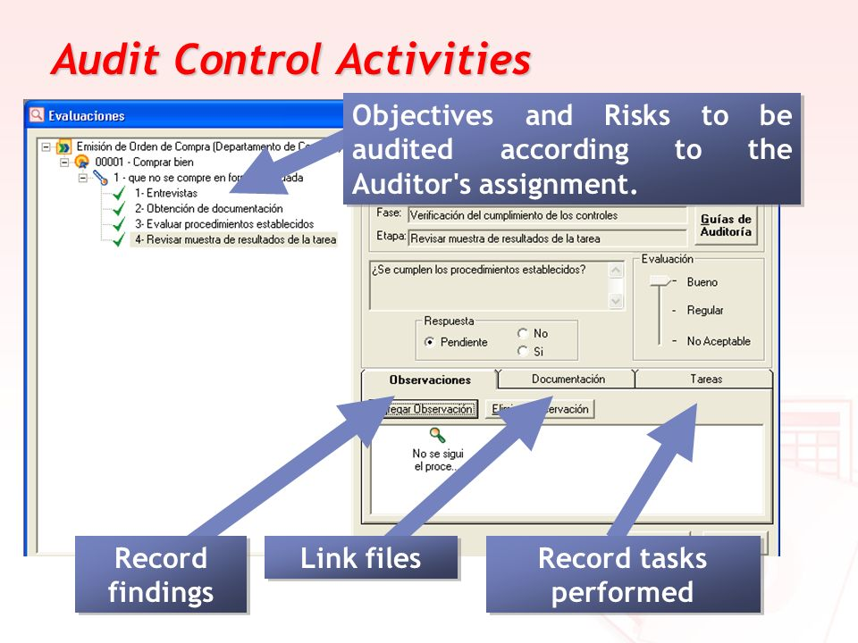 Audit Control Activities Link files Record tasks performed Objectives and Risks to be audited according to the Auditor's assignment. Record findings