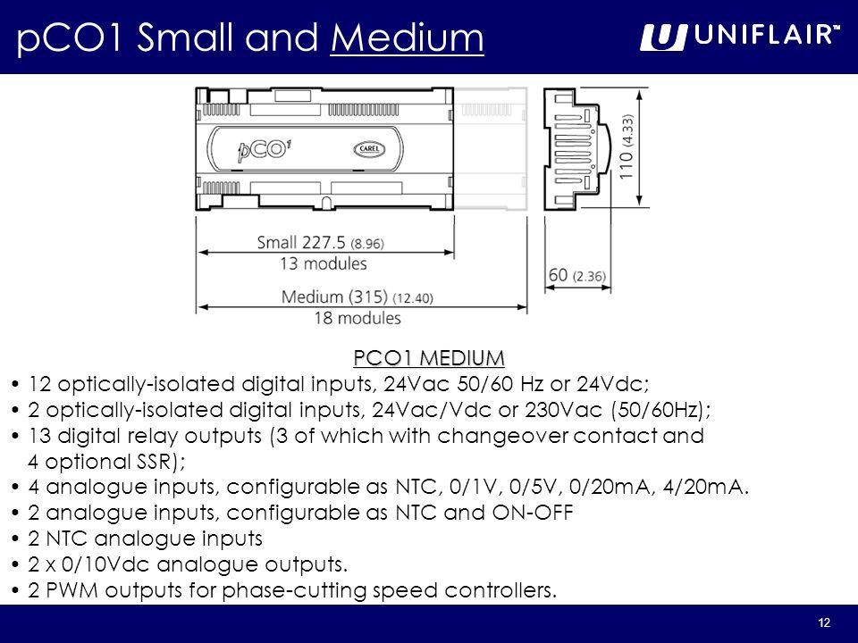 12 PCO1 MEDIUM 12 optically-isolated digital inputs, 24Vac 50/60 Hz or 24Vdc; 2 optically-isolated digital inputs, 24Vac/Vdc or 230Vac (50/60Hz); 13 d