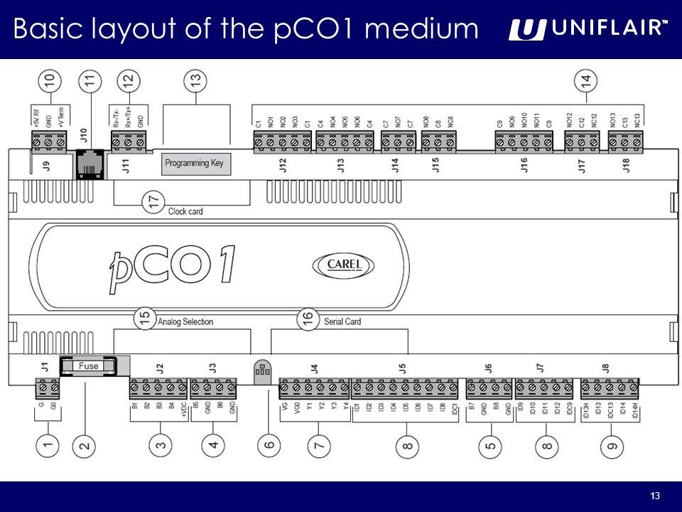 13 Basic layout of the pCO1 medium