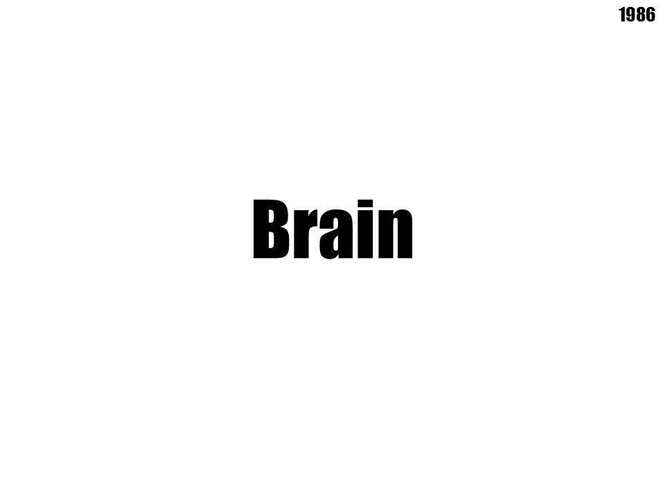 Brain 1986