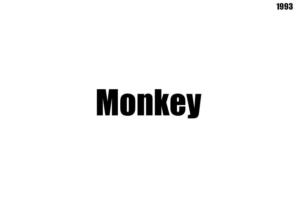 Monkey 1993