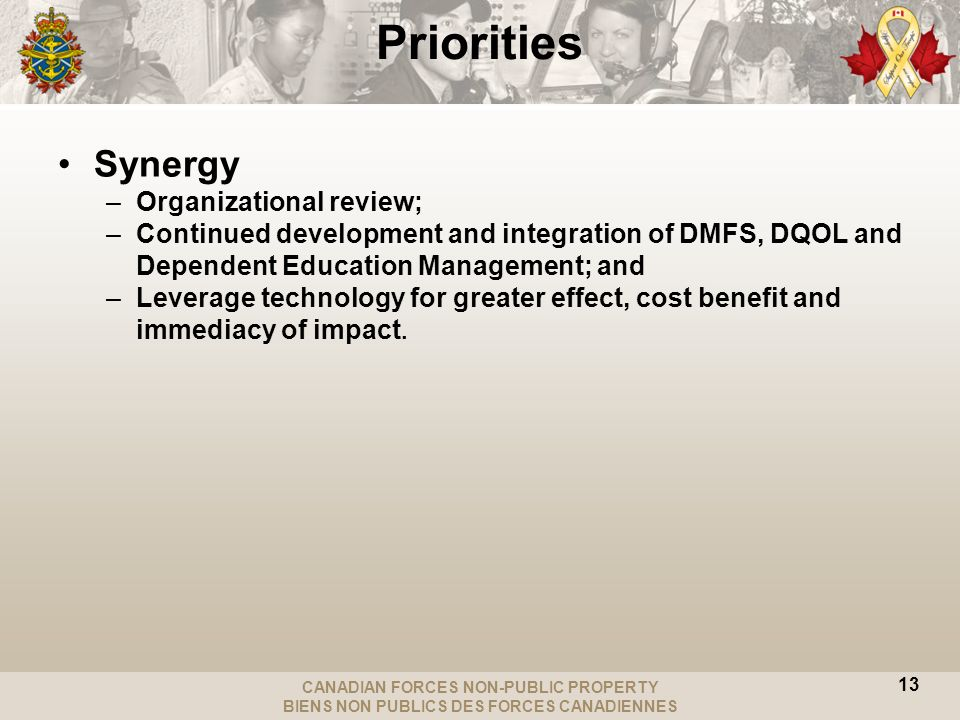 CANADIAN FORCES NON-PUBLIC PROPERTY BIENS NON PUBLICS DES FORCES CANADIENNES Synergy –Organizational review; –Continued development and integration of DMFS, DQOL and Dependent Education Management; and –Leverage technology for greater effect, cost benefit and immediacy of impact.
