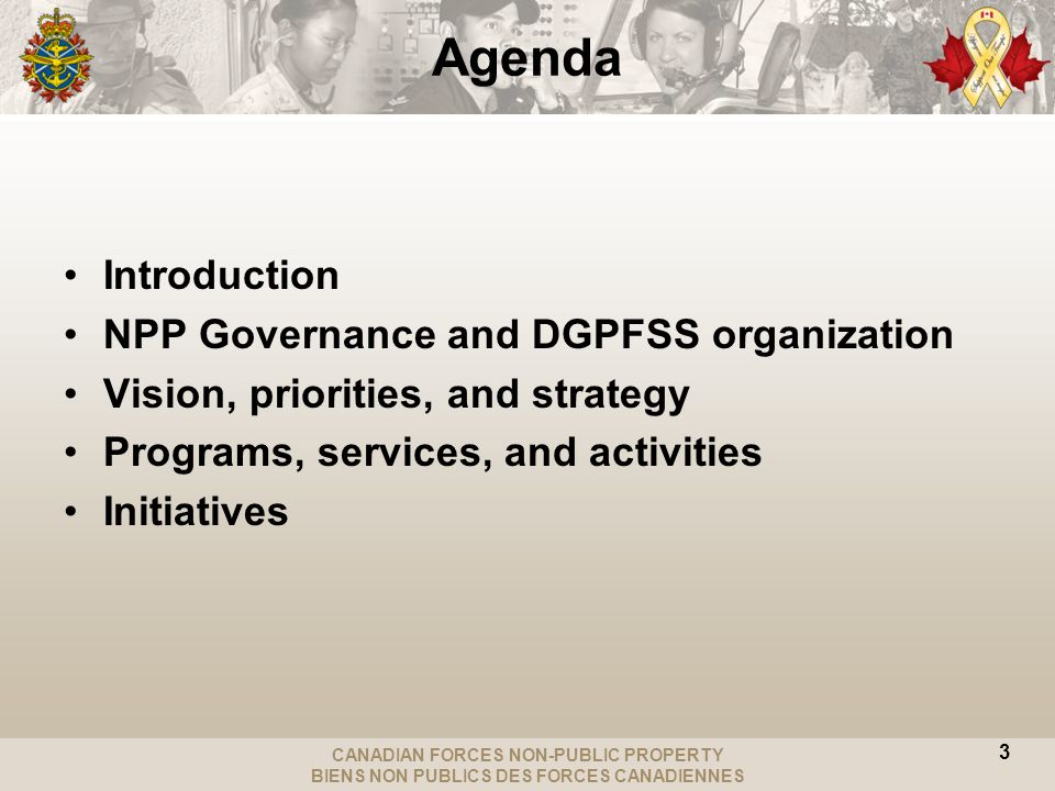 CANADIAN FORCES NON-PUBLIC PROPERTY BIENS NON PUBLICS DES FORCES CANADIENNES Agenda Introduction NPP Governance and DGPFSS organization Vision, priorities, and strategy Programs, services, and activities Initiatives 3