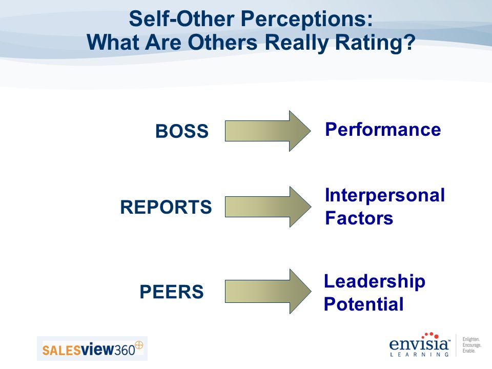 Self-Other Perceptions: What Are Others Really Rating.