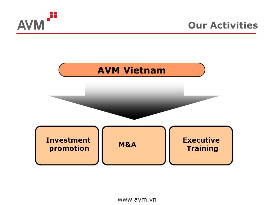 www.avm.vn Our Activities AVM Vietnam Investment promotion M&A Executive Training