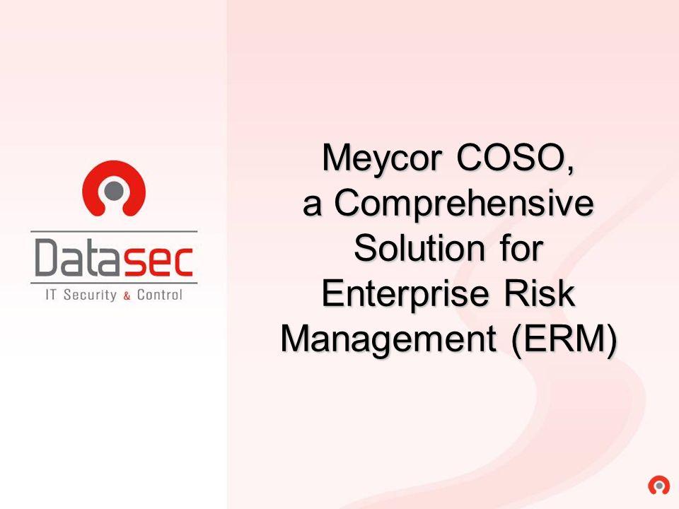 Meycor COSO, a Comprehensive Solution for Enterprise Risk Management (ERM)