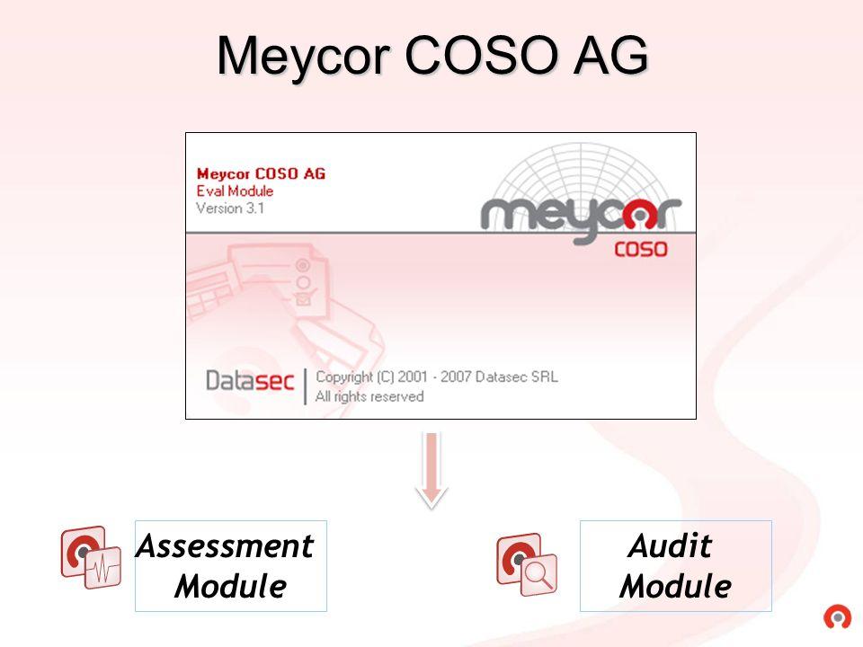Meycor COSO AG Assessment Module Audit Module