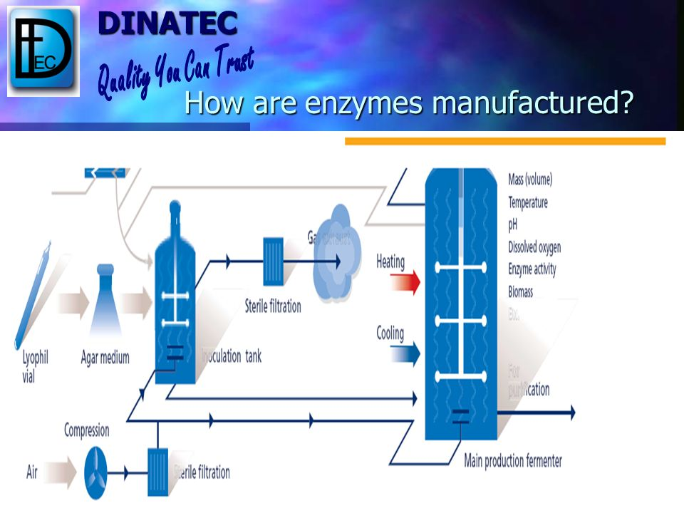 DINATEC How are enzymes manufactured?