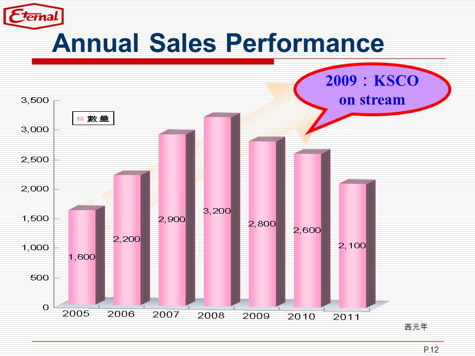 P.12 Annual Sales Performance 2009 KSCO on stream