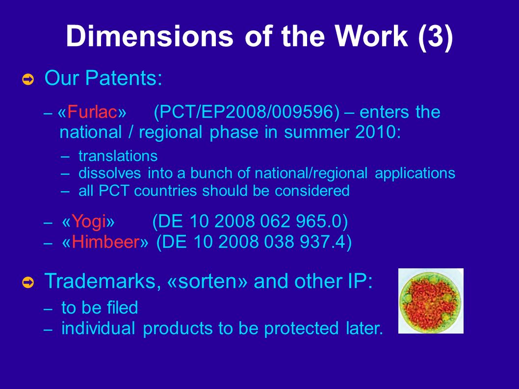 Dimensions of the Work (3) Our Patents: – «Furlac» (PCT/EP2008/009596) – enters the national / regional phase in summer 2010: – translations – dissolves into a bunch of national/regional applications – all PCT countries should be considered – «Yogi» (DE 10 2008 062 965.0) – «Himbeer» (DE 10 2008 038 937.4) Trademarks, «sorten» and other IP: – to be filed – individual products to be protected later.