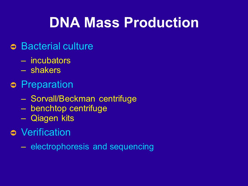 DNA Mass Production Bacterial culture – incubators – shakers Preparation – Sorvall/Beckman centrifuge – benchtop centrifuge – Qiagen kits Verification – electrophoresis and sequencing
