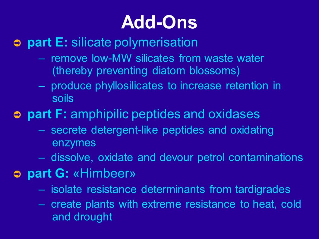 Add-Ons part E: silicate polymerisation – remove low-MW silicates from waste water (thereby preventing diatom blossoms) – produce phyllosilicates to increase retention in soils part F: amphipilic peptides and oxidases – secrete detergent-like peptides and oxidating enzymes – dissolve, oxidate and devour petrol contaminations part G: «Himbeer» – isolate resistance determinants from tardigrades – create plants with extreme resistance to heat, cold and drought