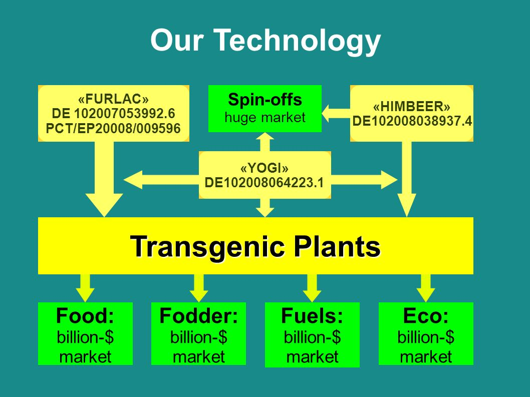 Our Technology Food: billion-$ market Fodder: billion-$ market Fuels: billion-$ market Eco: billion-$ market «FURLAC» DE 102007053992.6 PCT/EP20008/009596 «HIMBEER» DE102008038937.4 «YOGI» DE102008064223.1.