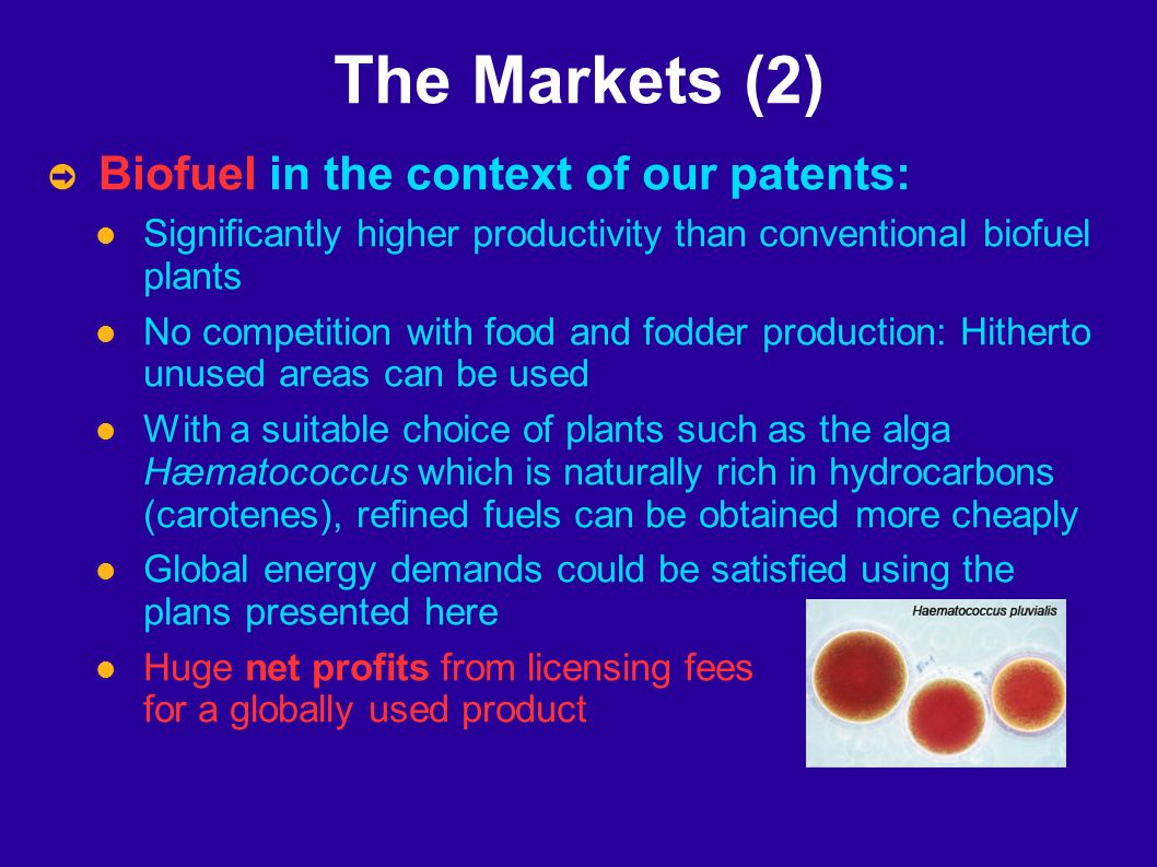 The Markets (2) Biofuel in the context of our patents: Significantly higher productivity than conventional biofuel plants No competition with food and fodder production: Hitherto unused areas can be used With a suitable choice of plants such as the alga Hæmatococcus which is naturally rich in hydrocarbons (carotenes), refined fuels can be obtained more cheaply Global energy demands could be satisfied using the plans presented here Huge net profits from licensing fees for a globally used product