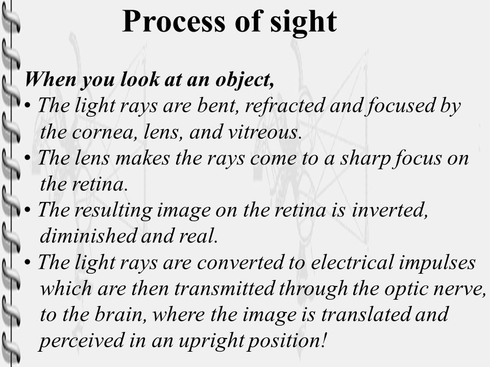 Process of sight When you look at an object, The light rays are bent, refracted and focused by the cornea, lens, and vitreous. The lens makes the rays