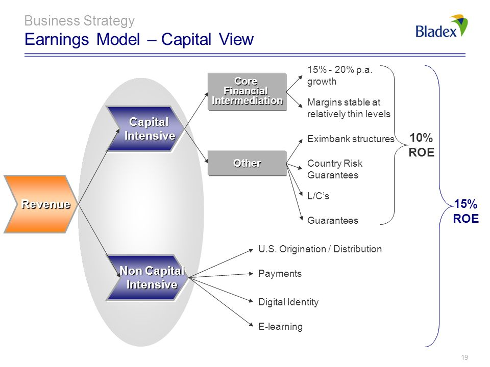 18 Business Strategy Earnings Model – Strategic View Capital Human Resources Processes & Technology Working Capital Trade Finance - Corporate Others U