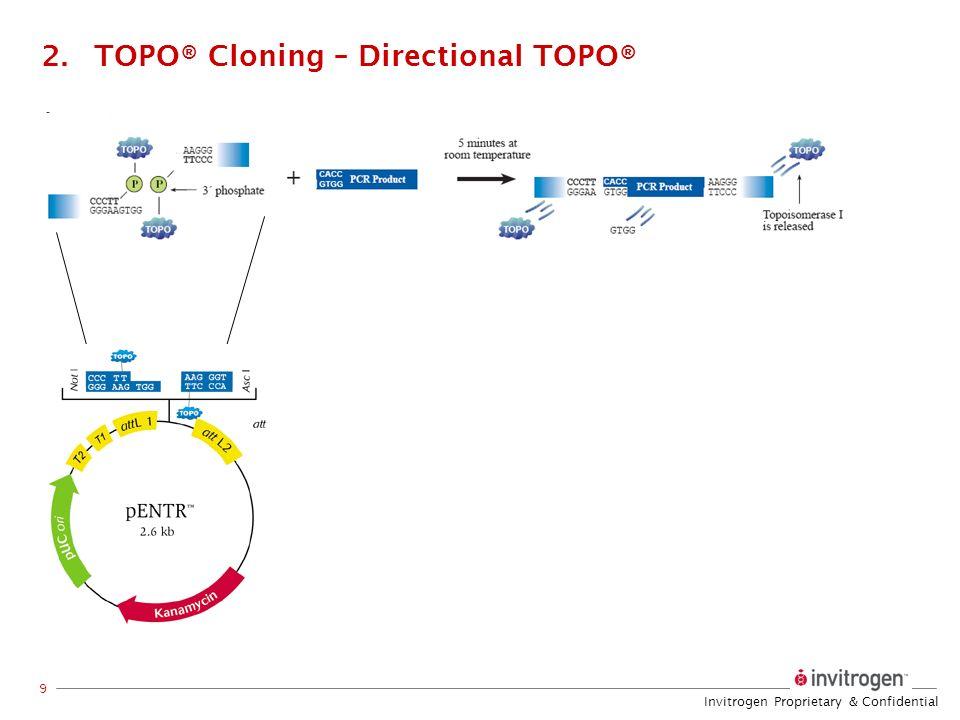 Invitrogen Proprietary & Confidential 9 2.TOPO® Cloning – Directional TOPO®