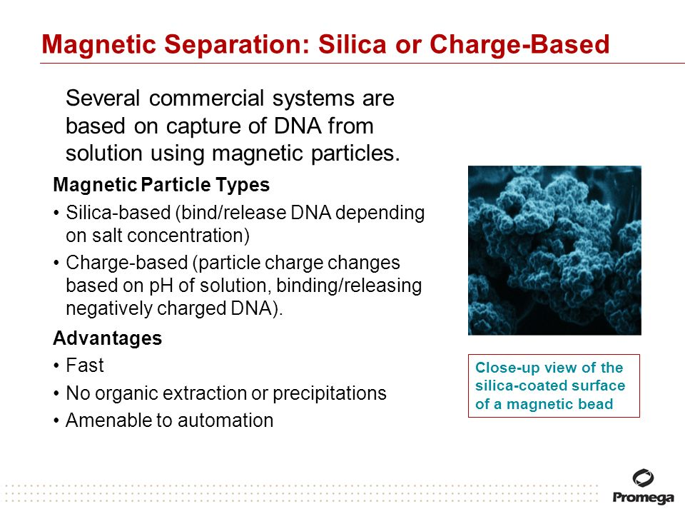 Magnetic Separation: Silica or Charge-Based Several commercial systems are based on capture of DNA from solution using magnetic particles. Magnetic Pa
