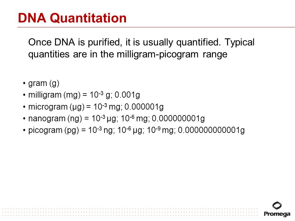 DNA Quantitation Once DNA is purified, it is usually quantified. Typical quantities are in the milligram-picogram range gram (g) milligram (mg) = 10 -