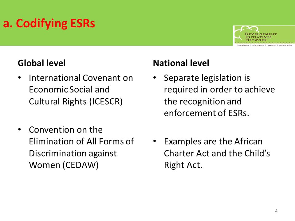 a. Codifying ESRs Global level International Covenant on Economic Social and Cultural Rights (ICESCR) Convention on the Elimination of All Forms of Di