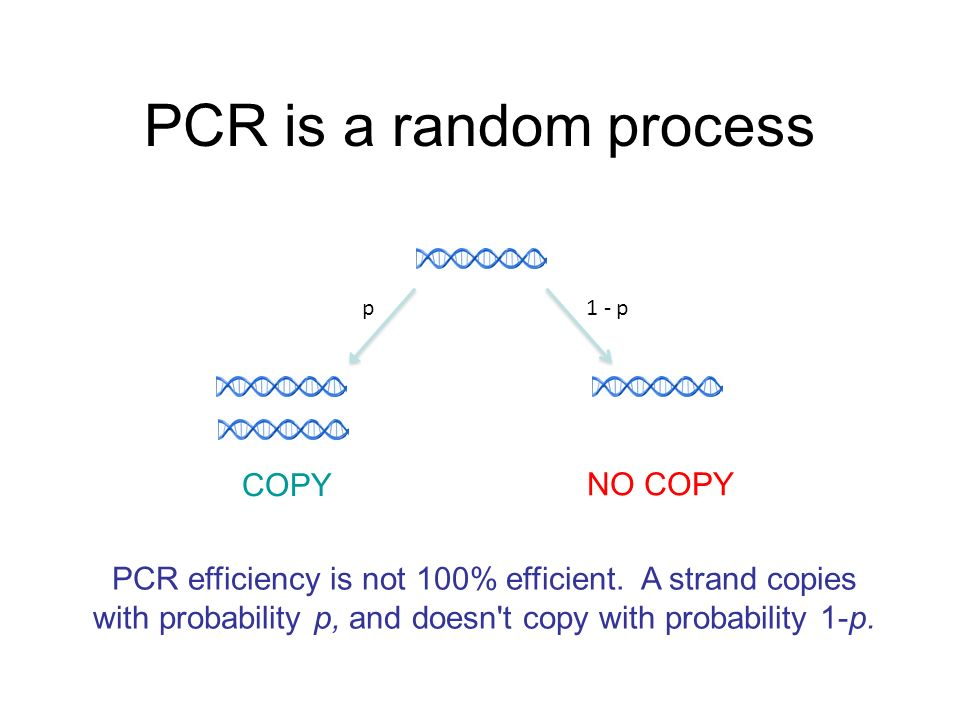 PCR is a random process p1 - p PCR efficiency is not 100% efficient.