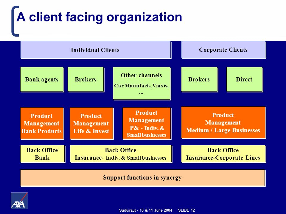Suduiraut - 10 & 11 June 2004 SLIDE 12 A client facing organization Individual Clients Bank agents Brokers Other channels Car Manufact., Viaxis,...