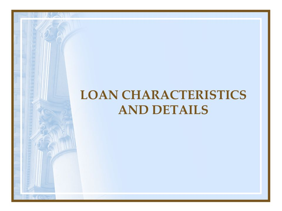 LOAN CHARACTERISTICS AND DETAILS