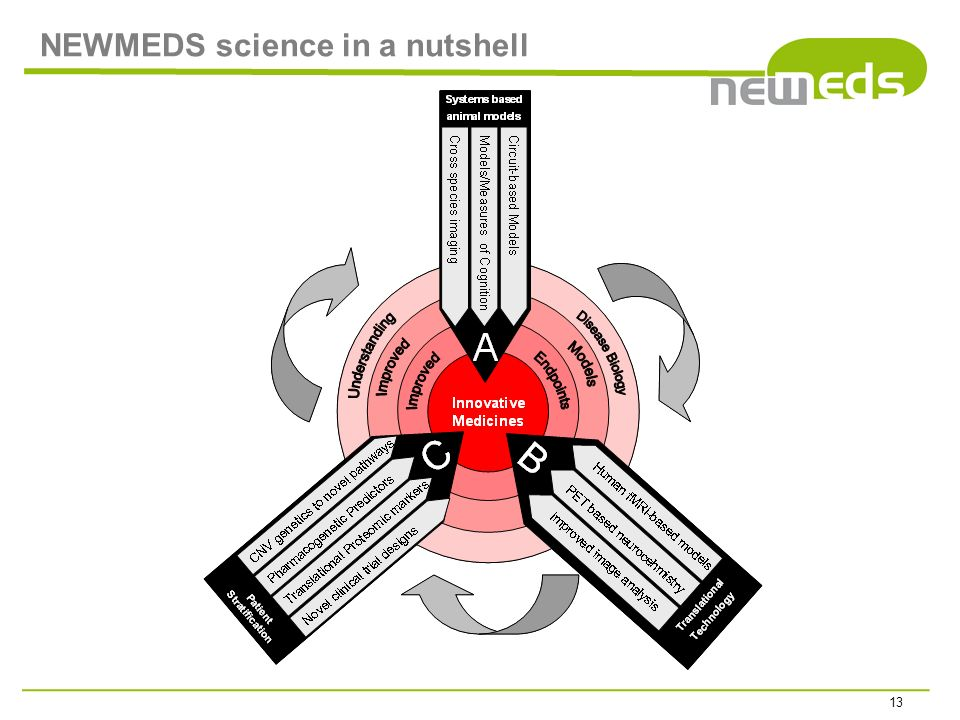 NEWMEDS science in a nutshell 13