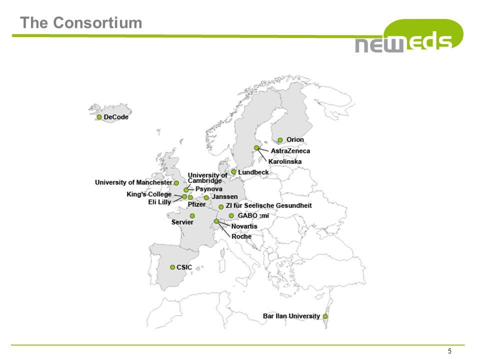 The Consortium 5