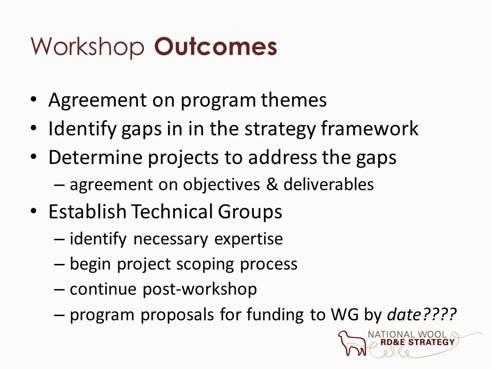 Workshop Outcomes Agreement on program themes Identify gaps in in the strategy framework Determine projects to address the gaps – agreement on objecti