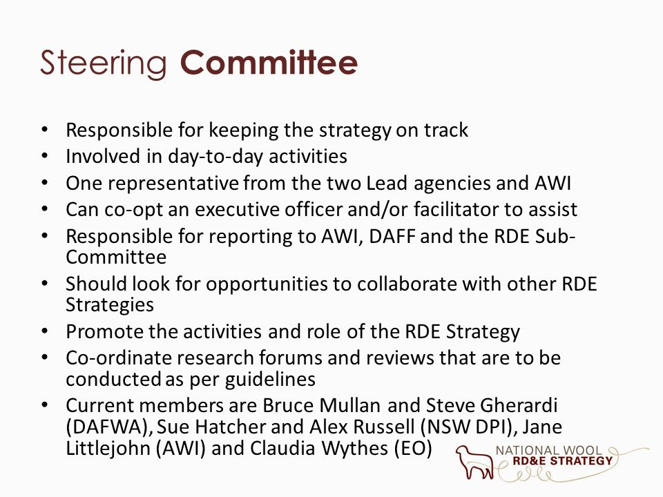 Steering Committee Responsible for keeping the strategy on track Involved in day-to-day activities One representative from the two Lead agencies and A