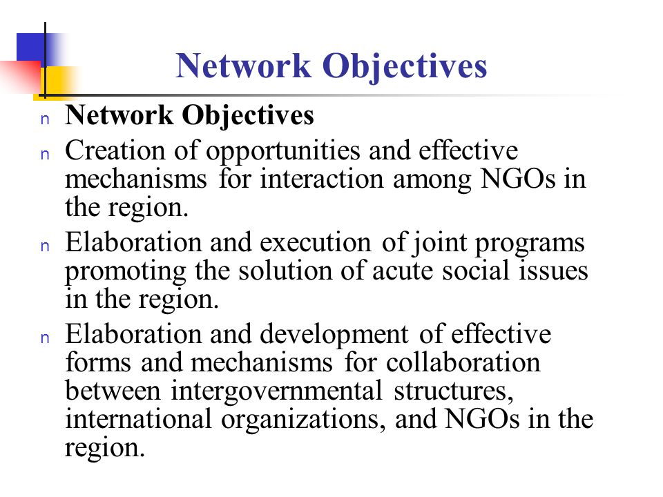 Network Objectives n Development of collaboration between legislative and executive bodies of the state and NGOs for enhancing effectiveness and productivity of social policy programs in the countries of the region.
