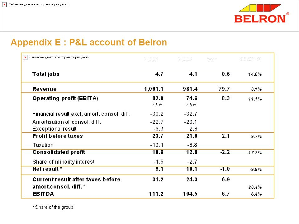 Appendix E : P&L account of Belron Vehicle glass with EUR million