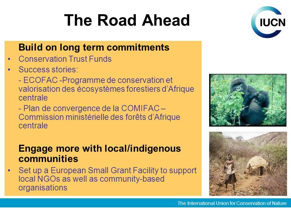The International Union for Conservation of Nature The Road Ahead Build on long term commitments Conservation Trust Funds Success stories: - ECOFAC -Programme de conservation et valorisation des écosystèmes forestiers dAfrique centrale - Plan de convergence de la COMIFAC – Commission ministérielle des forêts dAfrique centrale Engage more with local/indigenous communities Set up a European Small Grant Facility to support local NGOs as well as community-based organisations