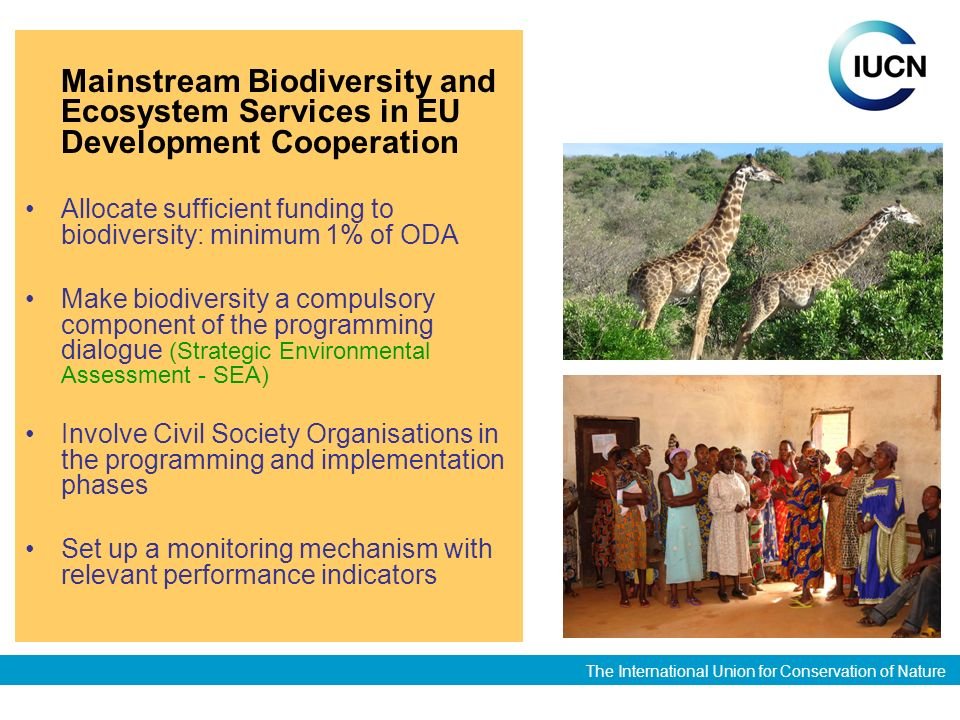 The International Union for Conservation of Nature Mainstream Biodiversity and Ecosystem Services in EU Development Cooperation Allocate sufficient funding to biodiversity: minimum 1% of ODA Make biodiversity a compulsory component of the programming dialogue (Strategic Environmental Assessment - SEA) Involve Civil Society Organisations in the programming and implementation phases Set up a monitoring mechanism with relevant performance indicators
