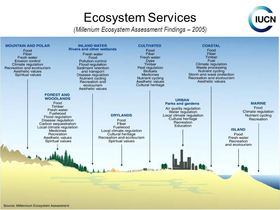 Ecosystem Services (Millenium Ecosystem Assessment Findings – 2005)