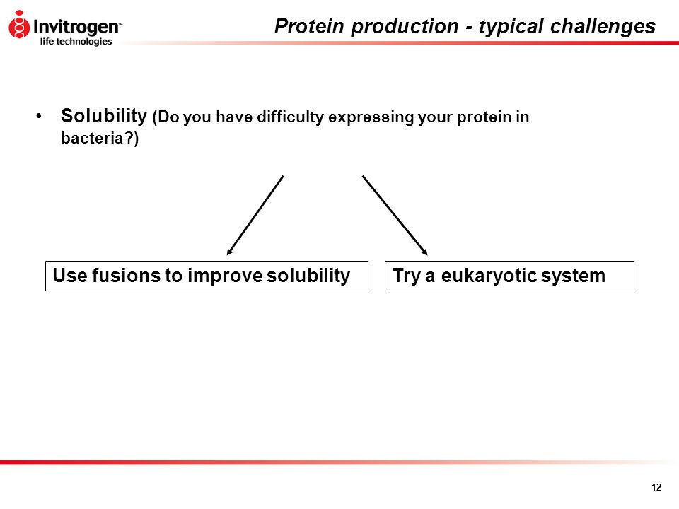 12 Protein production - typical challenges Solubility (Do you have difficulty expressing your protein in bacteria?) Use fusions to improve solubilityT